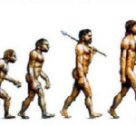 Evolution of the fat man